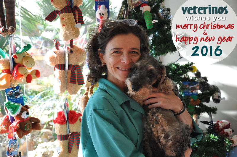 Veterinos - Christmas Card 2015
